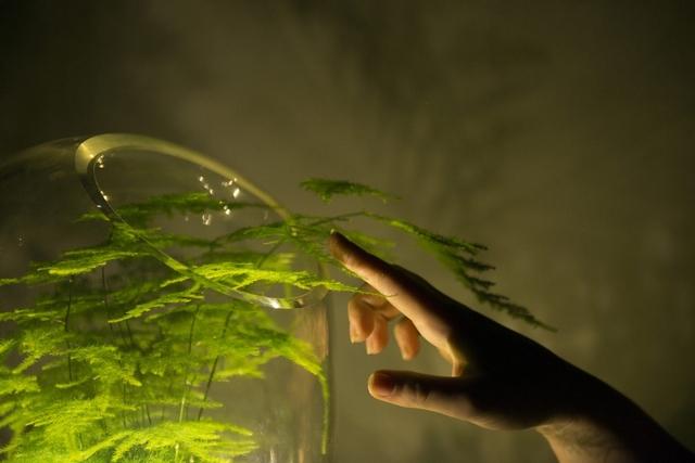 Фото: livinglight.info