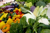 Что ждёт сельскохозяйственный рынок Украины?