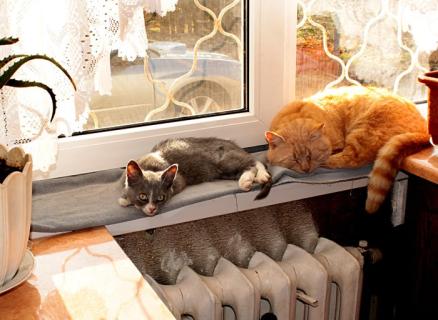 http://radiator.in.ua/