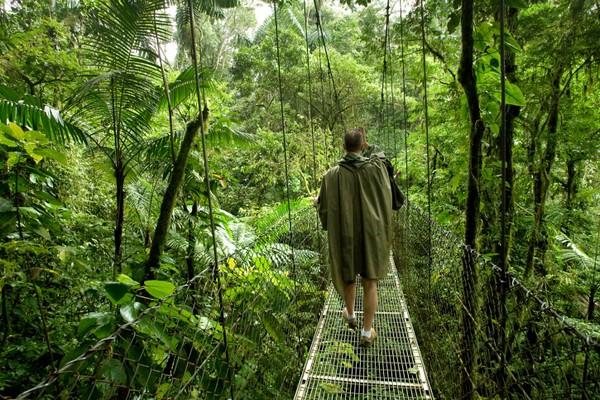 Экологический туризм 3