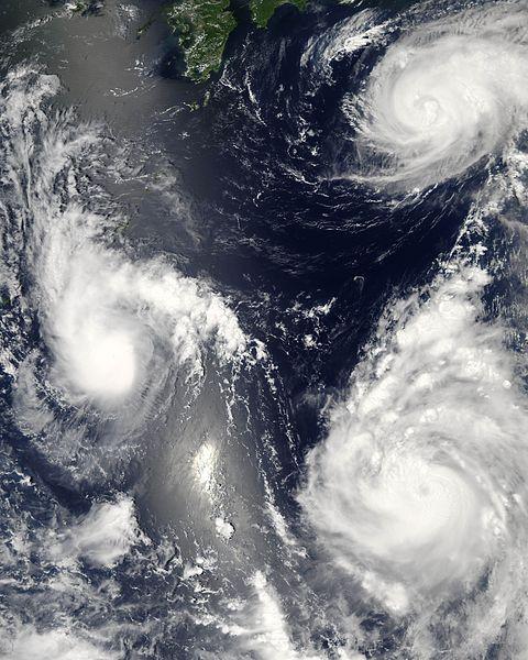 480px-Typhoon_saomai_060807.jpg