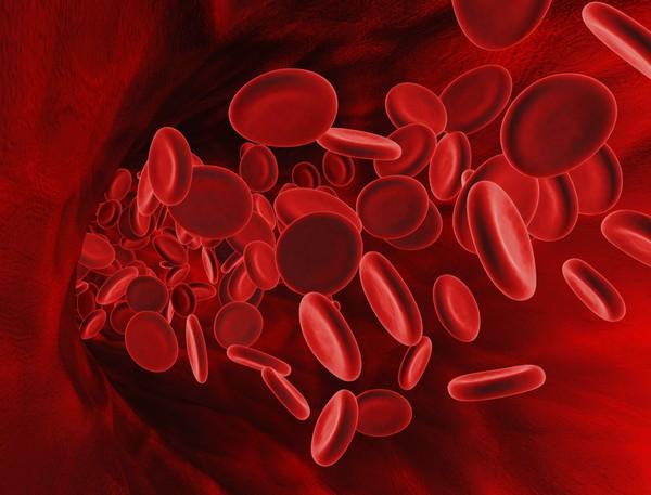 Невероятные факты: на самом деле существует 29 групп крови.