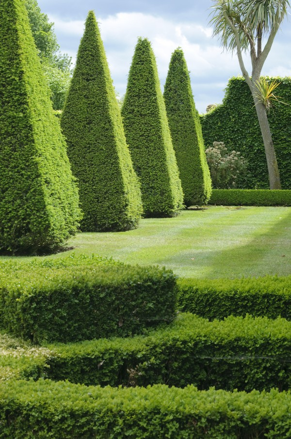 Дизайн сада — это целая наука.
