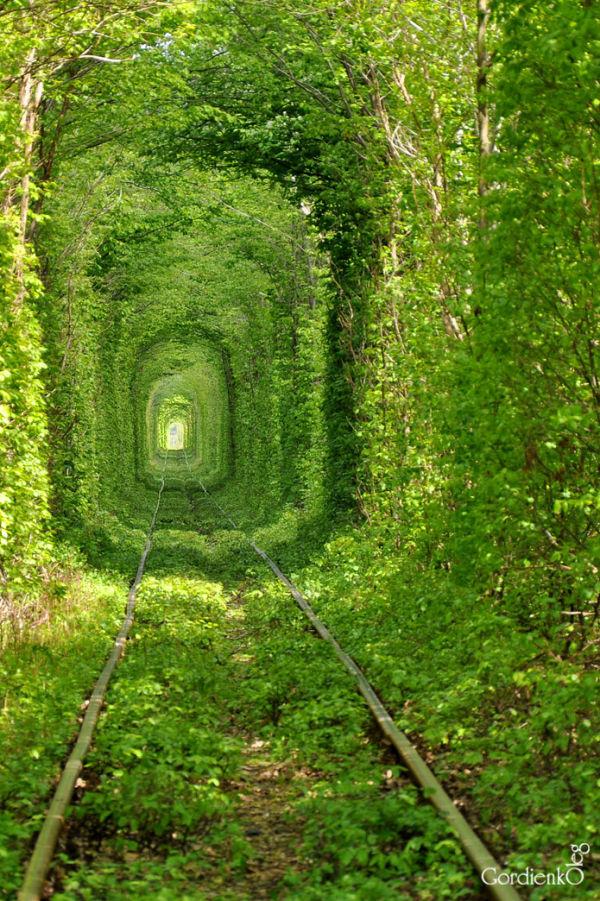 «Туннель любви», Клевань, Украина. Фото: Олег/iloveukraine.com.ua