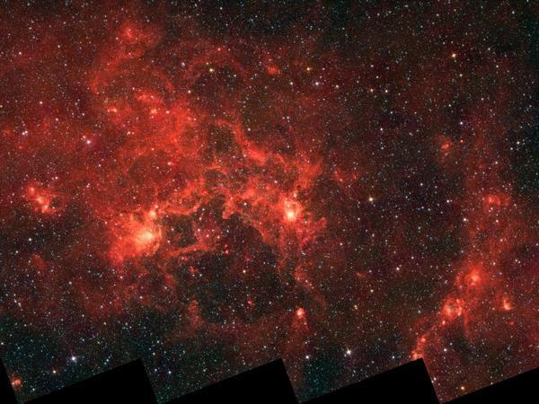Фотографии космоса. Туманность «Рыба-Дракон».
