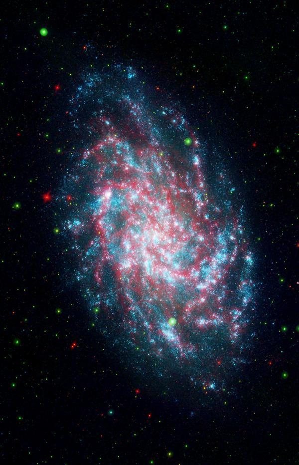 Фотографии космоса. Анатомия галактики М33.