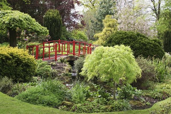 Дизайн сада в английском стиле.