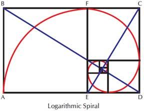 LogSpyr_4.jpg